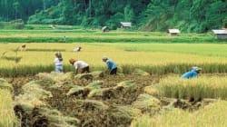 東アジア地域の経済成長が鈍化 しかし引き続き世界全体の原動力に