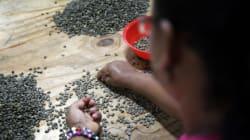 La vie des femmes rurales colombiennes: d'inégalités et