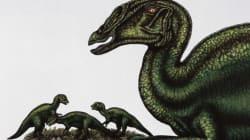 En Mongolie, découverte de «bébés» dinosaures encore dans leur
