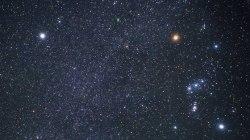 Gli astronomi dicono di aver trovato una megastruttura