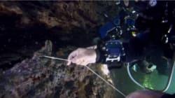 Une avalanche sous-marine surprend des scientifiques