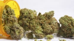 Four Arrested In Raid On Medical Pot Dispensary In