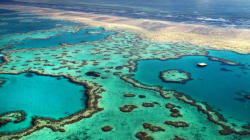 Slip, Slop, Stop Polluting Great Barrier Reef With