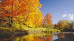 8 Tips For Planning An Unforgettable Fall