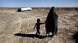 À cause du réchauffement, le Golfe persique pourrait devenir