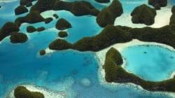 L'arcipelago di Palau diventerà un santuario