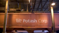 PotashCorp Will Slash Production, Close N.B. Mine