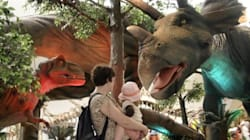 Toronto Zoo For