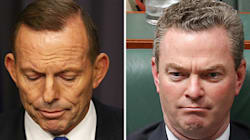 Could Abbott Have Won The Election? Pyne Doesn't Think