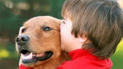 Kids Who Grow Up With Dogs Are Less Likely To Develop