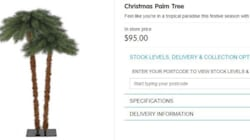 Christmas Palms: Will This Tree Sleigh The
