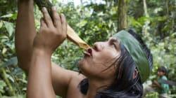 A incrível história de cooperação entre o xamanismo do Peru e cientistas dos