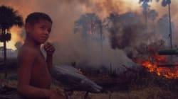 L'Amazzonia brucia e le conseguenze le pagheremo anche