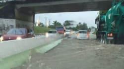 Voitures emportées et routes coupées, la Martinique est sous