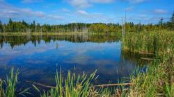 «Freshwater Information Platform» : partager les données sur l'eau en