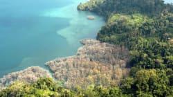 12 Quakes Rock Andaman And Nicobar Archipelago In 24