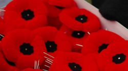 Charges Laid For Man Accused Of Stealing Poppy