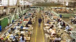 パリ留学後、2万人の小さな町にあるニット工場に就職した若者