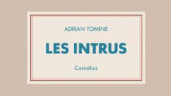 Les Intrus: une BD d'Adrian Tomine entre tristesse contemporaine et humour