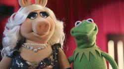 Les «Muppets» à l'origine d'une chicane à