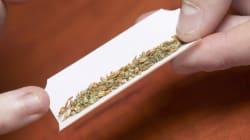 Paris Terrorist Smoked 'Alarming Amount Of Cannabis', Drank Alcohol, Says