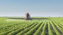 Pesticides: Québec veut tripler le nombre de substances interdites
