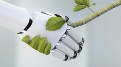 Des plantes-robots pour