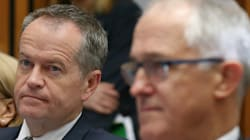 The Unpopular Alternative PM, Shorten Seeks Poll