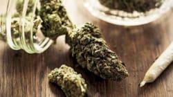 Addio vecchia marijuana. In Italia si fuma