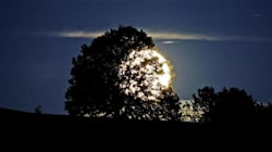 La bellezza pagana dell'ultimo plenilunio prima del solstizio