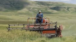 Farmers Fired Up Over Alberta Farm Safety