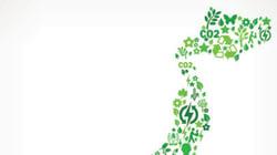 国内の温室効果ガス排出量、5年ぶりに減少 環境省が発表