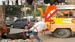 Video Clip Showing VHP Workers Kicking Cow Goes