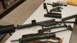 Registre des armes: Ottawa demande un délai dans la cause sur la