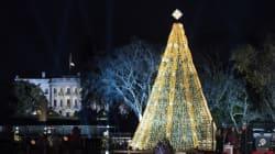 Les plus beaux sapins de Noël de 2015 partout dans le monde