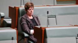 Former Speaker Anna Burke Quits