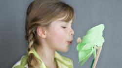 Pour Noël, pourquoi ne pas acheter un jouet écolo à vos enfants