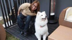 Confusing Cineplex Policy Denies Wheelchair User Advance 'Star Wars'