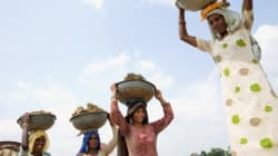 Haryana Goes Bride Hunting Before Polls. Here's Why Only 'Educated' Girls Are
