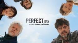 Un Perfect Day per mettere ordine nel