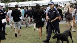 Music Festivals And Drugs: Your Legal