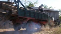 Au Cambodge, bois précieux et flics