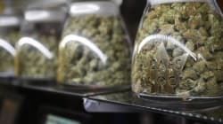 The U.S. Marijuana Industry Is Looking Less And Less Like A Black