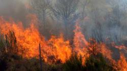 Année record d'incendies: les finances de Parcs Canada à