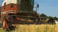Farmers Counter Sue Wheat