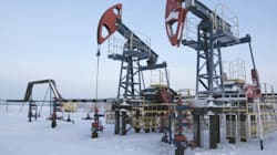 Royalty Review Will Be Sensitive To Oil Price Drop: