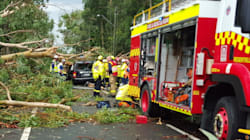 Man Killed By Falling Tree As Storms Rip Through