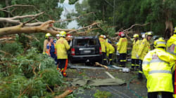 Sydney Storm Clean-Up Continues As Thousands Of Homes Still Without