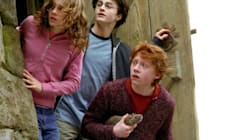 Ron Weasley Clears Up One Hilarious Rumor From The Set Of 'Harry