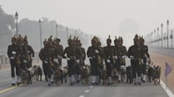 Indian Army Dogs To March Down Rajpath On Republic Day After 26